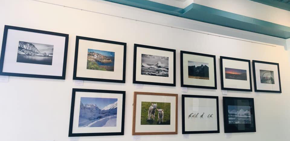 Harbour Cafe - Local Artists - 1