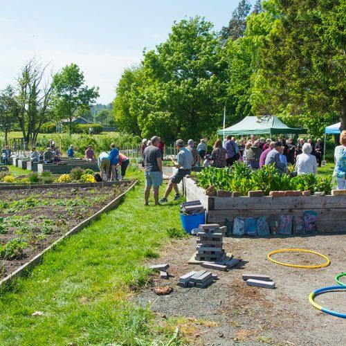 Community Garden Springfest